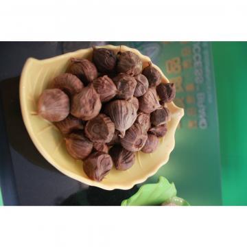 Chinese Black Garlic Made by Purple Garlic 6.0cm-6.5cm in Jinxiang Shandong China