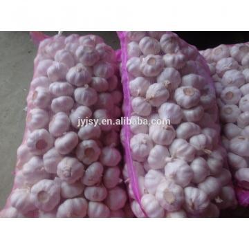 2017 china garlic.
