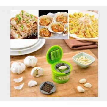 Multifunctional device cut shredder garlic mashed garlic press Garlic Chopper