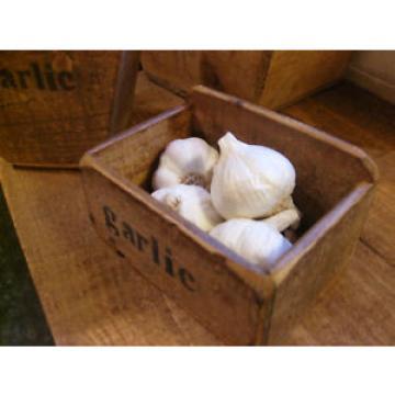 (NEW) FARMHOUSE GARLIC TUB  (pot) (basket)