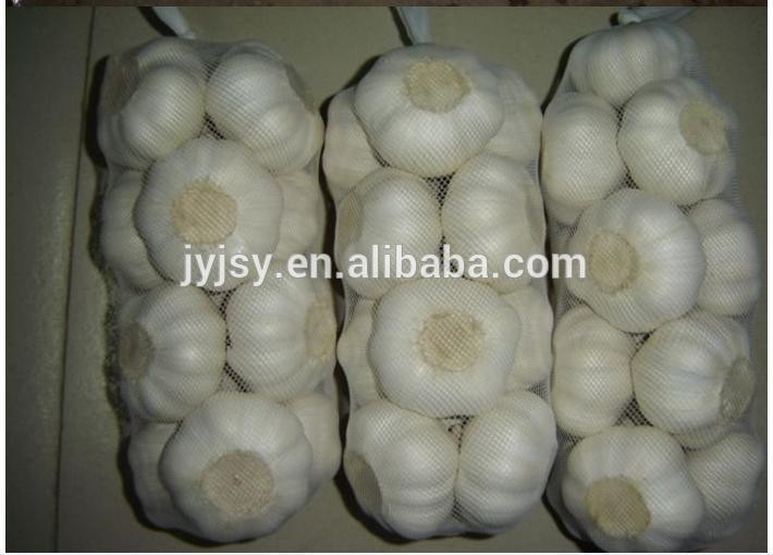 fresh pure white and normal white garlic for 2017